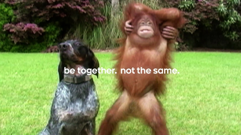 be together not the same