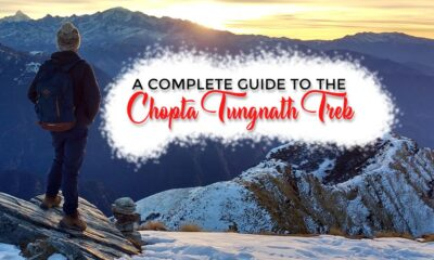 A Complete Guide To The Chopta Tungnath Trek