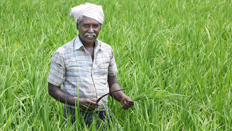 Income tax for the Farmers